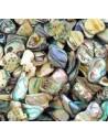Nacre, perles de culture